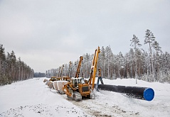 On the construction of the North-European gas pipeline
